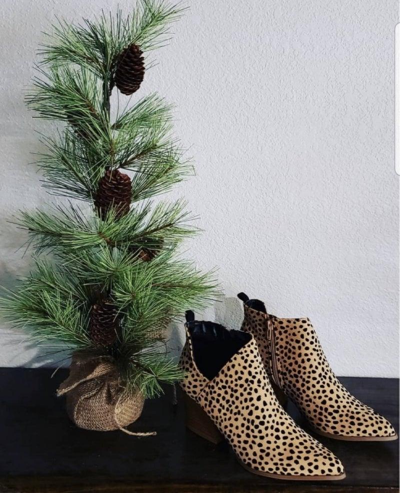 Pointy Toe Leopard Nava Booties