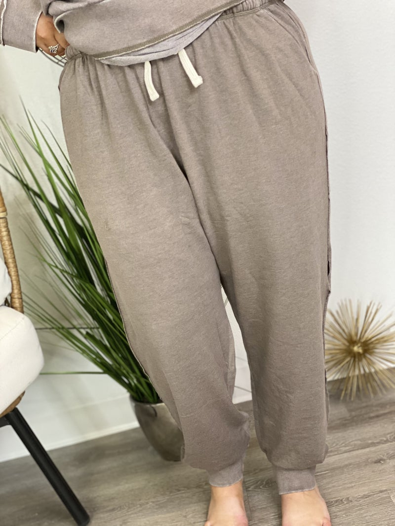 The Curvy Greystone Joggers