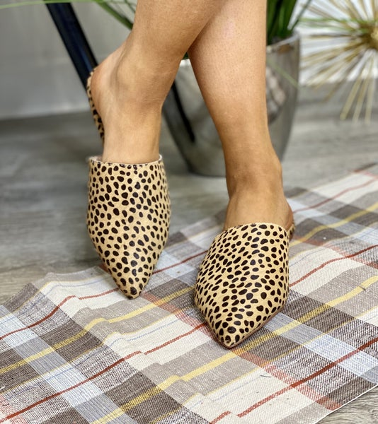 The Cheetah Shu Mules