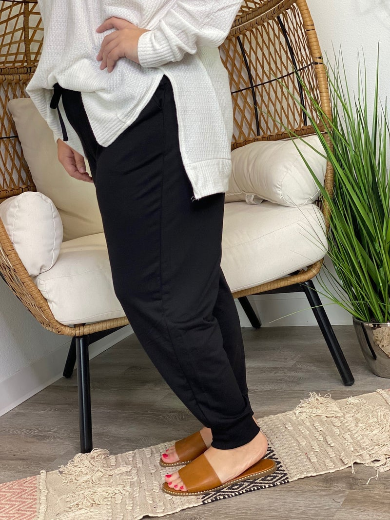 LD STEAL #31: CURVY Frenchterry Joggers