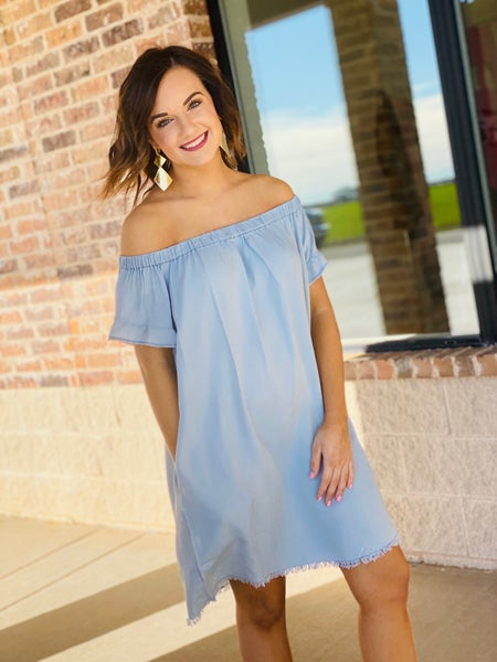 The Denim Olivia Dress