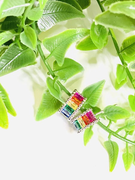 Rainbow Revolution Earrings