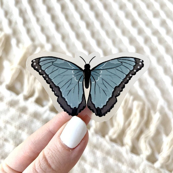 Clear Common Blue Morpho Butterfly Sticker