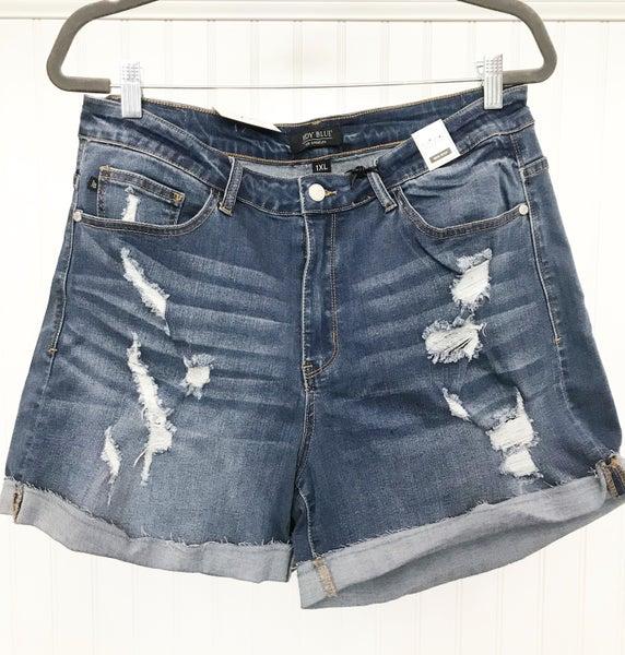 Plus Judy Blue Raw Hem Distressed Shorts