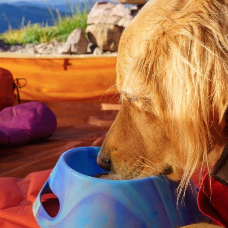 1L Aqua-Fur Pet Bowl