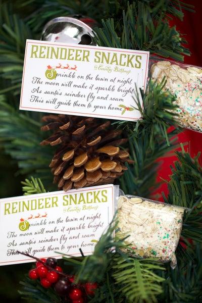 Reindeer Snacks - Fun Christmas Tradition!