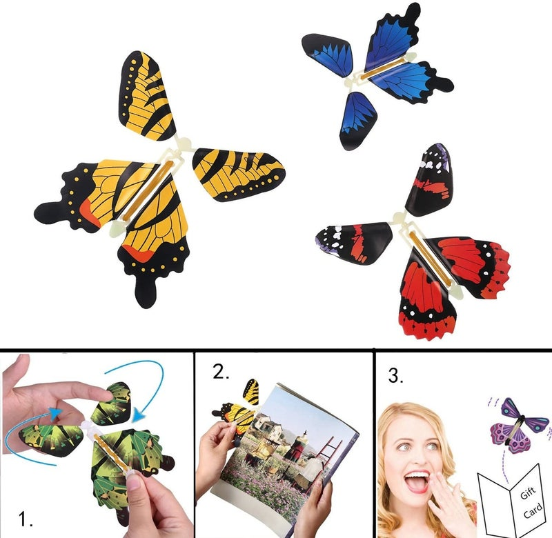 Magic Wind-Up Butterfly