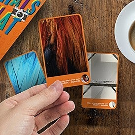 What that Pic Card Game