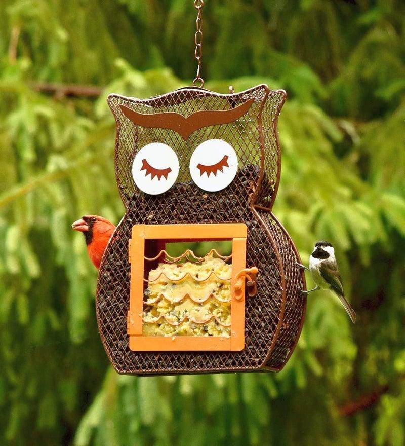 Heath Suet and Seed Owl Bird Feeder