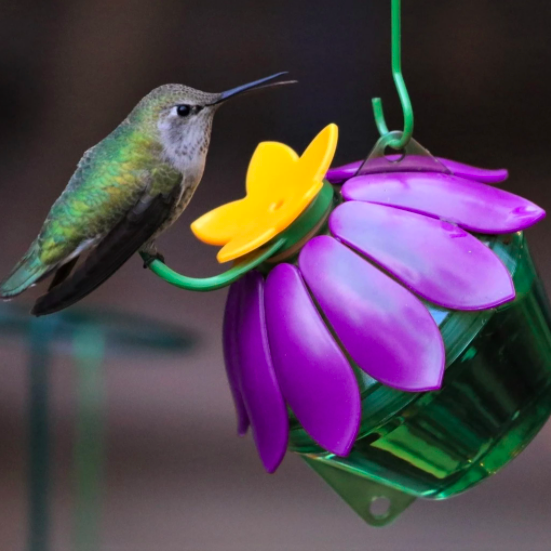 Nature's Way So Real Flower Hummingbird Feeder