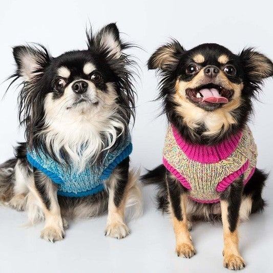 CC Mixed Yarn Knitted Pet Sweater