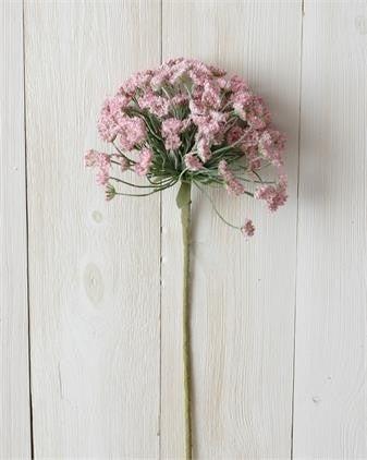 Branch Allium PINK