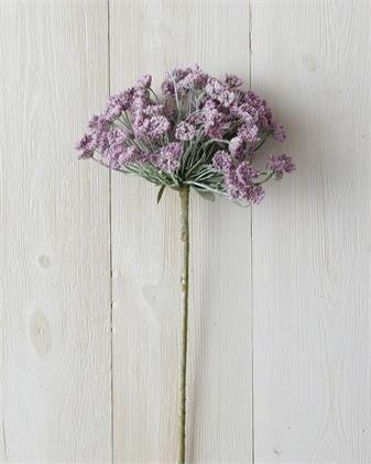 Lavender Branch