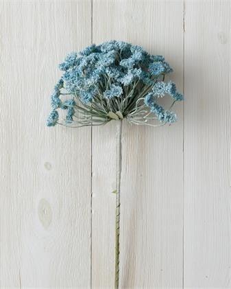 Allium Blue Branch