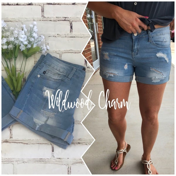Judy Blue Distressed Shorts.