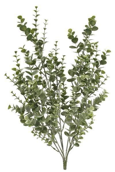 "20""L Eucalyptus Bush"