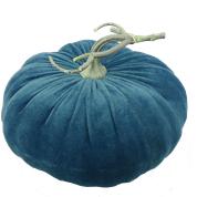 Velvet Pumpkin W9xH7 teal
