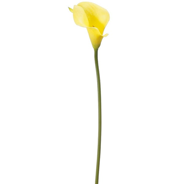 "15"" Mini Calla Lily Spray  Yellow"