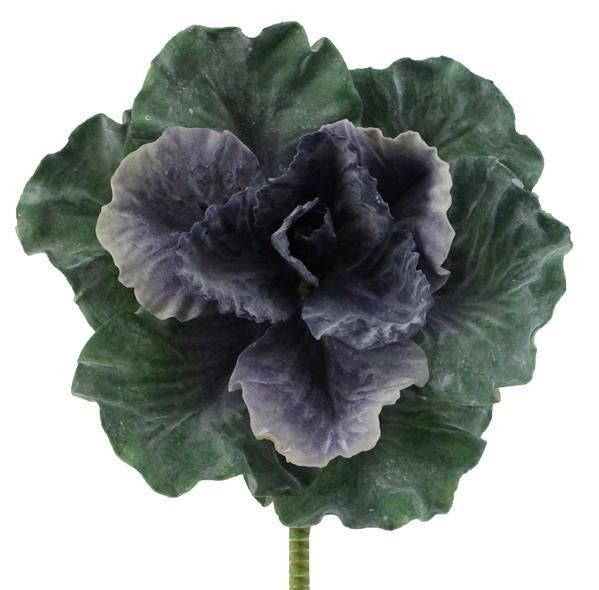 "9""Small Cabbage Plant"