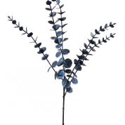 Metallic Eucalyptus Spray X5 H26