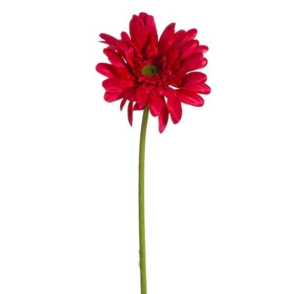 "21.5"" Medium Gerbera Daisy Spray Beauty"