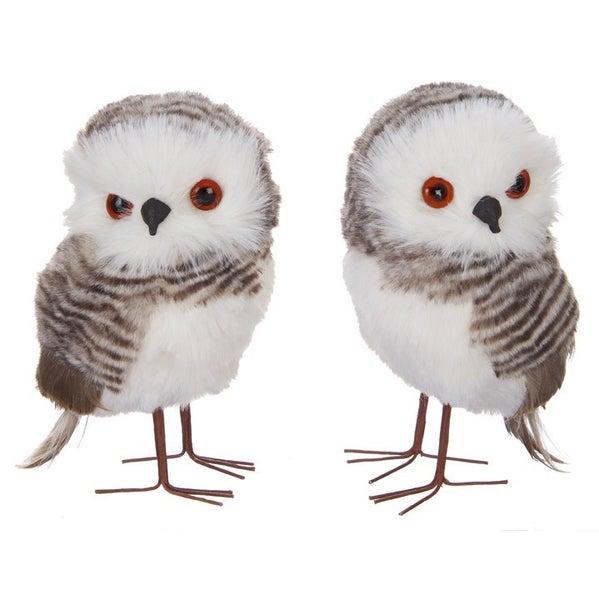 """4.5\"""" OWL Cozy"""