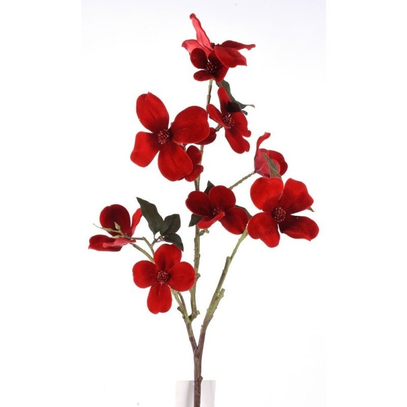 VELVET DOGWOOD STEM Red