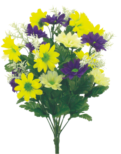 Color Fast Daisy Mix Bush X 14 H17 Purple Yellow