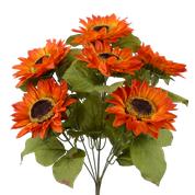 Color Fast Sunflower Bush X 7  H22 Orange/red