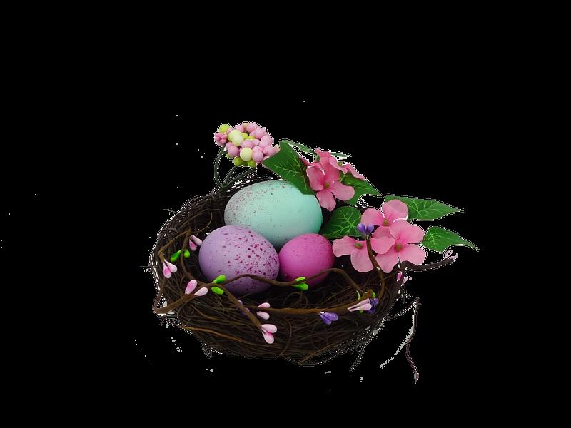 Birdnest W Egg Berry Peach Blossom Dia5Xh2