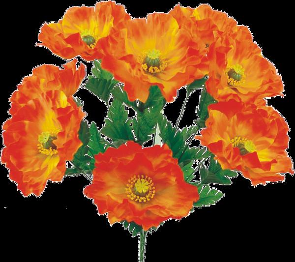 """Satin Poppy bush x 10, 19""""H Orange"""