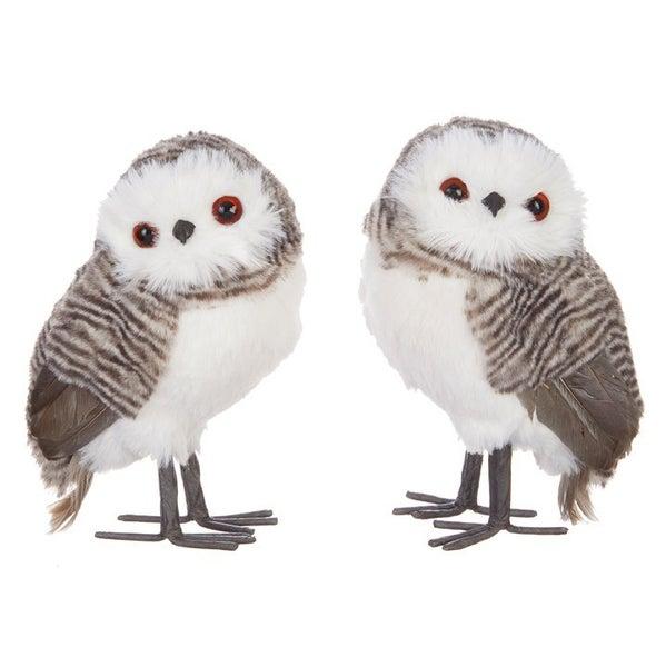 """6\"""" OWL Cozy"""