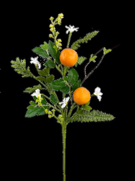 Orange Spray H28