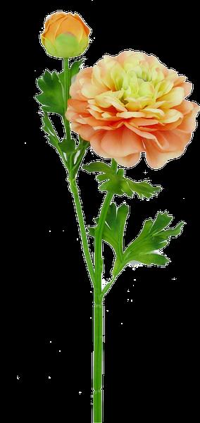 """20"""" German Ranunculus Spray X 2 Coral"""