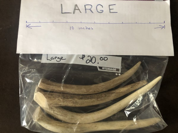 Large All Natural Antler Dog Chews