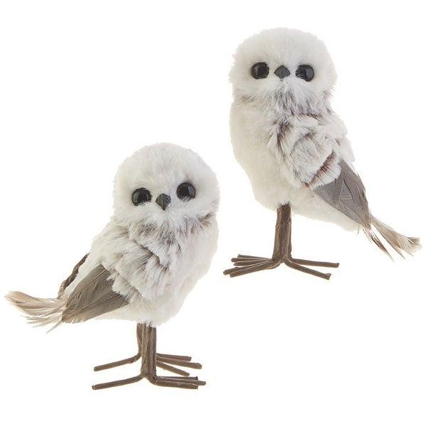"5\"" OWL Grey"