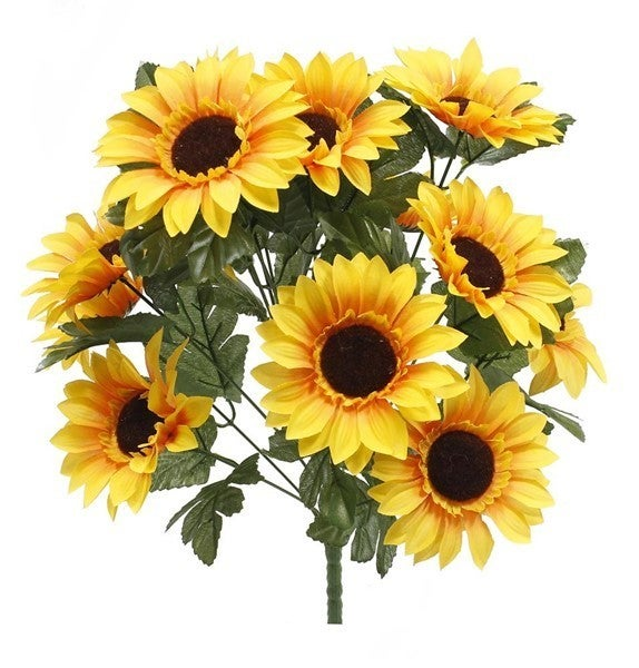 Sunflower Bush X14