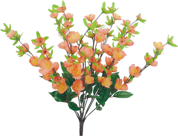 Cherry Blossom Bush x 10 H18