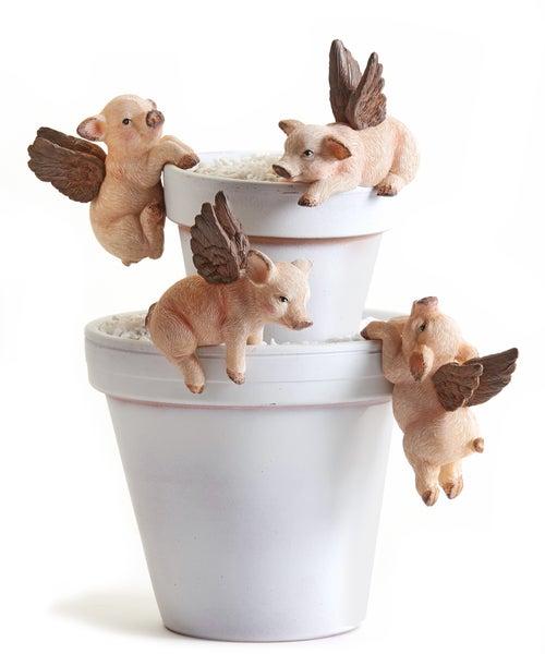 PIG POT HUGGERS