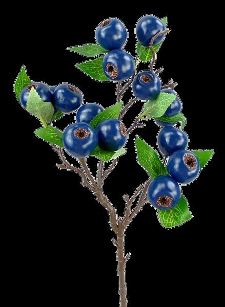 Berry Spray H23 Blue