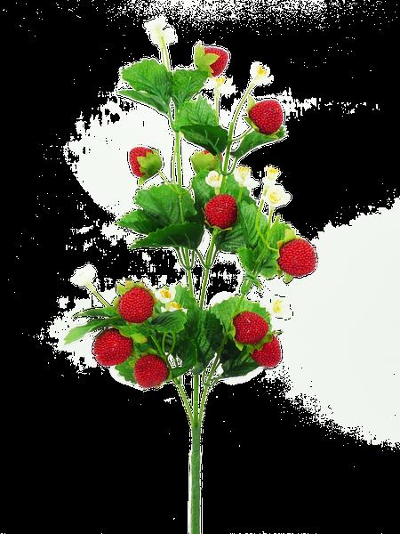 Strawberry Spray H24