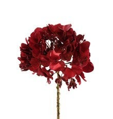 Christmas Red Hydrangea Stem Red