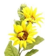 """35""""L Sunflower Spray"""