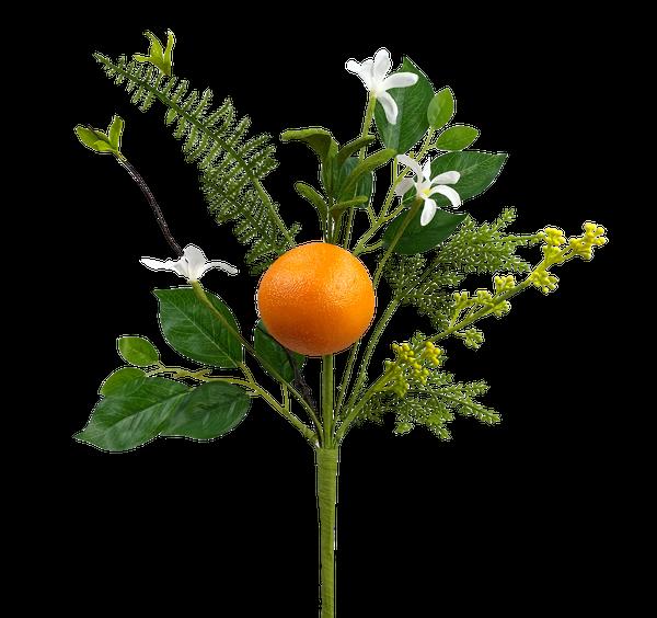 Orange Pick H16