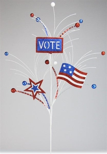 "26""Oal Vote Sign/Usa Flag/Star Spray"