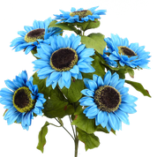 Color Fast Sunflower Bush x 7 H22 Blue