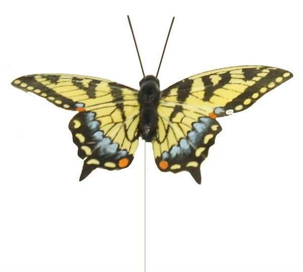 "4"" Tiger Swallowtail Butterfly 1 dozen"