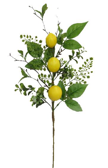 Lemon Pick H22
