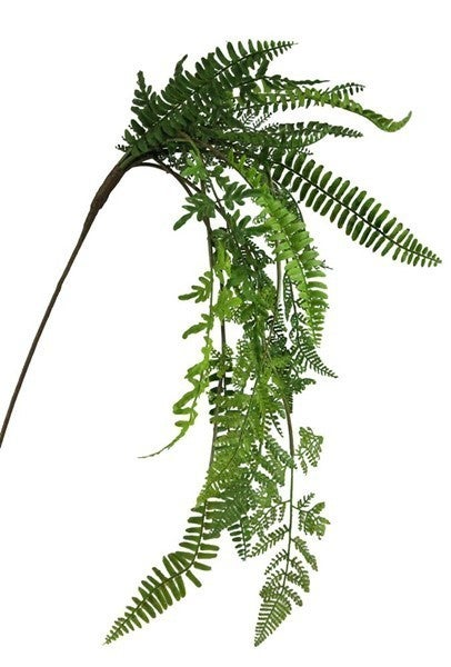 "36"" Hanging Mixed Fern Vine"