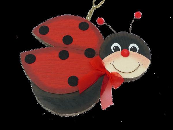 Orn Wooden Ladybug D1xW11xH9
